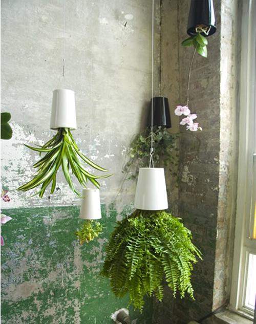 Sky Planter, il sistema che mette le piante a testa in giu'  DesignBuzz.it