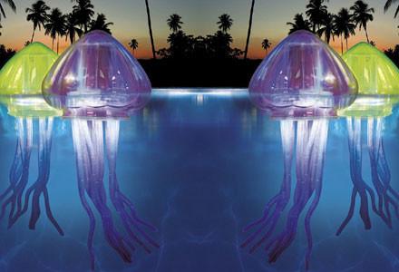 meduse-piscina