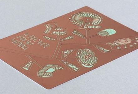 souvenir Vienna Ding3000