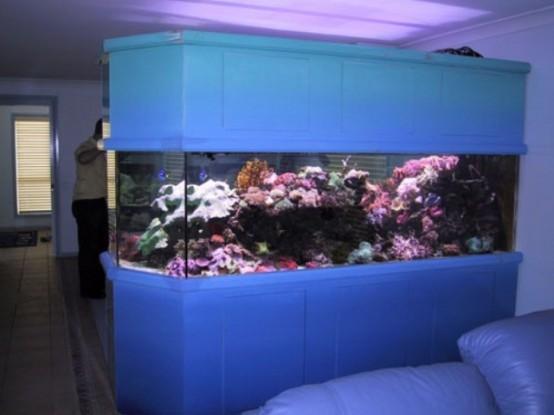 Idee per un acquario in casa for Acquario per tartarughe grandi