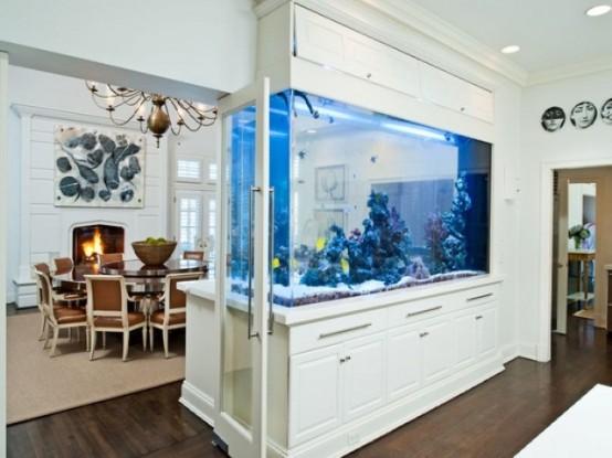 Idee per un acquario in casa  DesignBuzz.it