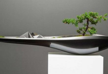 kasokudo-bonsai-01