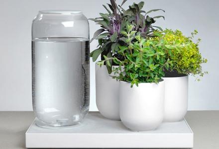tableau le piante si annaffiano da sole