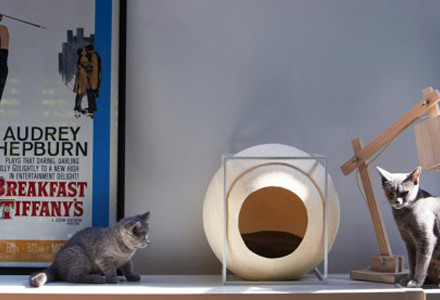 cuccia gatti meyou