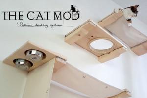 cat-mod-01