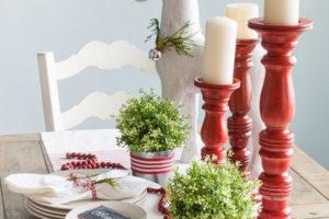 addobbi-natalizi-bianco-rosso-08