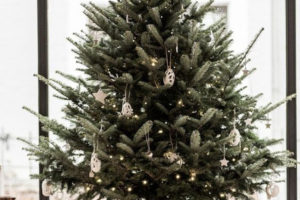 base-albero-natale-28