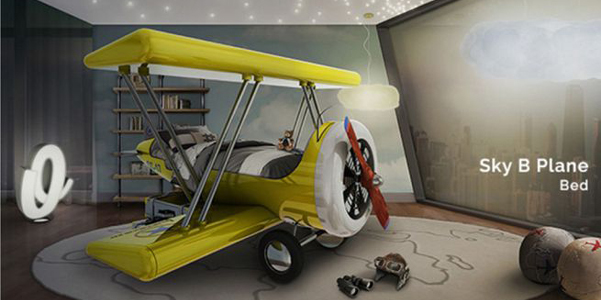 Sky-B-Plane-Circu