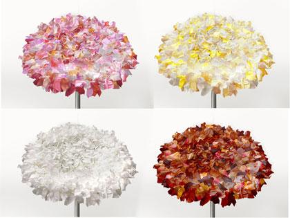 bouquet-moroso-coll-bis.jpg