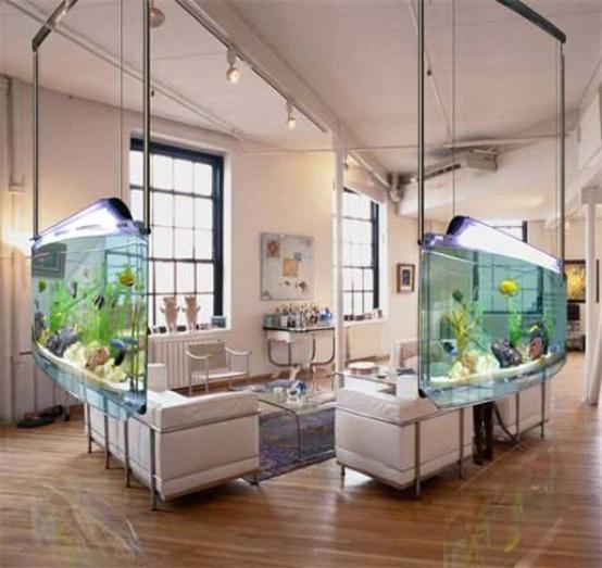 Idee per un acquario in casa - Acquario in casa ...