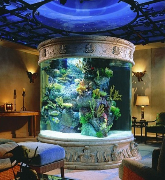 Idee per un acquario in casa - Acquario x casa ...
