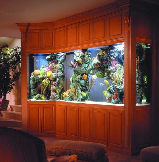 Idee per un acquario in casa for Arredamento acquario