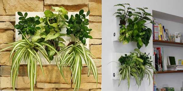 Hoh giardino verticale ortisgreen - Giardino verticale in casa ...