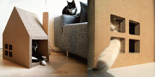casa gatti cartone