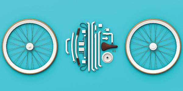 bike-in-a-bag