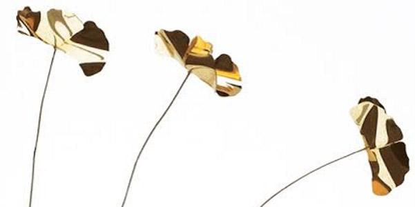 fiori-di-latta
