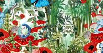illustrazioni new botany