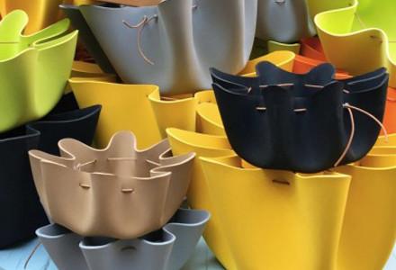contenitori shell collection tete de bois