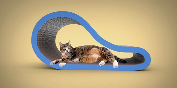 curved scratching lounge