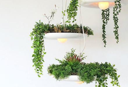 lampadari giardino well light