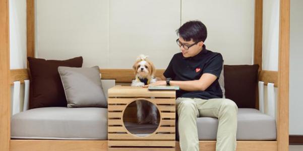 pet-divano-modulare-cuccia